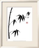 Bamboo II Print by Jenny Tsang