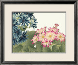 Japanese Flower Garden IV Prints by Konan Tanigami
