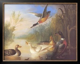 Waterfowl in a Landscape Posters by Marmaduke Cradock