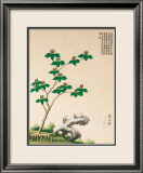Arbre chinois en fleurs IV Posters
