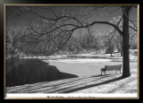 Heritage Pond in Winter Print by Monte Nagler