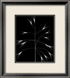 Wild Grasses III Prints by K. Kennedy