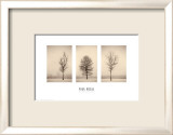 Winterscapes Prints by Paul Kozal