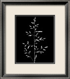 Wild Grasses I Print by K. Kennedy