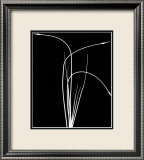 Wild Grasses II Posters by K. Kennedy