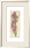 Orchid with Branch Prints by Julie Nightingale