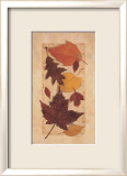 Autumn Harvest I Print by Deni Michelle Newey