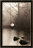 Silvered Morning Pond Posters par Heather Ross