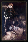 Harry Potter And The Goblet Of Fire Prints