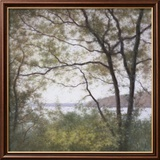 Lakeside Trees I Prints by John Folchi