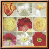 Floral Collection Plakater af Robert Mertens