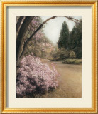 Azalea Way Prints by Barbara Kalhor