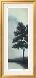 Trees in the Mist III Gerahmter Druck (limitierte Auflage) von Deac Mong