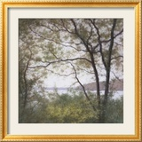Lakeside Trees I Print by John Folchi