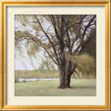 Lakeside Trees II Prints by John Folchi