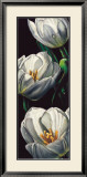 Dewdrop Tulips Prints by Alma'ch