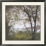 Lakeside Trees I Art by John Folchi