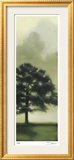 Trees in the Mist II Reproduction encadrée édition limitée par Deac Mong