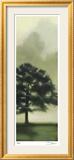 Trees in the Mist II Gerahmter Druck (limitierte Auflage) von Deac Mong