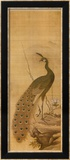 Peacock Affiches par Yanagisawa Kien
