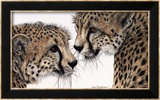 Special Bond Prints by Jan Henderson