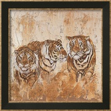 Les Tigres I Prints by Carole Ivoy