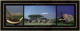 Elephants and Kilimanjaro Prints by Michel & Christine Denis-Huot
