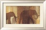 Safari Silhouette IV Affischer av Tandi Venter