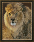 Power and Presence: African Lion Posters par Joni Johnson-godsy