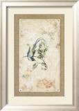 Asian Paradise Flycatcher Affischer av Jillian David
