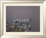 Meute de chiens Limited Edition Framed Print by (henri Aguiella) Cueco