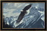 Wings over Winter Print by Ron Parker