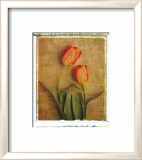 Tulips Posters by Vincenzo Ferrato