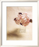 Cut Flowers I Print by Vincenzo Ferrato