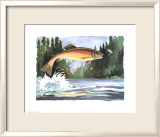 Rainbow Trout Poster von Paul Brent