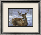 Through My Window: Whitetail Deer Art par Joni Johnson-godsy