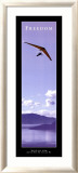 Freedom: Hang Glider Affiches