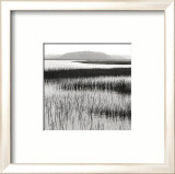 Nut Island, Salt Marsh Print by Dorothy Kerper Monnelly