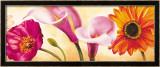 Danse de Fleurs II Poster von Pierre Viollet