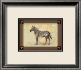 Zebra with Border I Poster