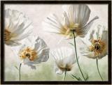 Raggi di Sole Posters af Eva Barberini