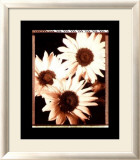 Beautiful Flower IV Poster von Gerard Van Hal