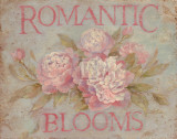 Romantic Blooms Poster by Debi Coules