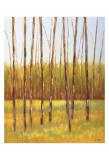 Tall Trees I (left) Art by Libby Smart