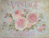 Vintage Rose Poster by Debi Coules