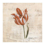Tulipes IV Prints by Sylvie Langet