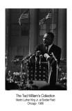 Martin Luther King, Jr. Kunst av Ted Williams