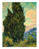Cypresses, c.1889 Giclee Print by Vincent van Gogh