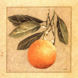 Orange I Prints by Laurence David