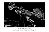 Louis Armstrong Posters par Ted Williams